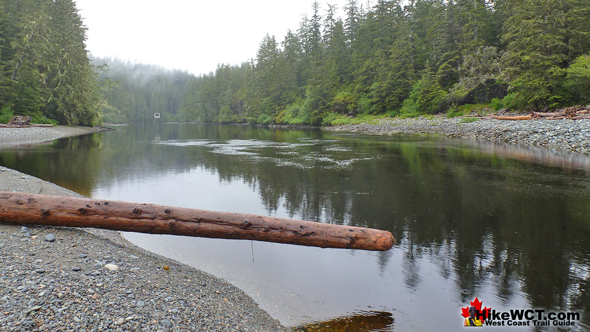 Klanawa River Campsite on the West Coast Trail