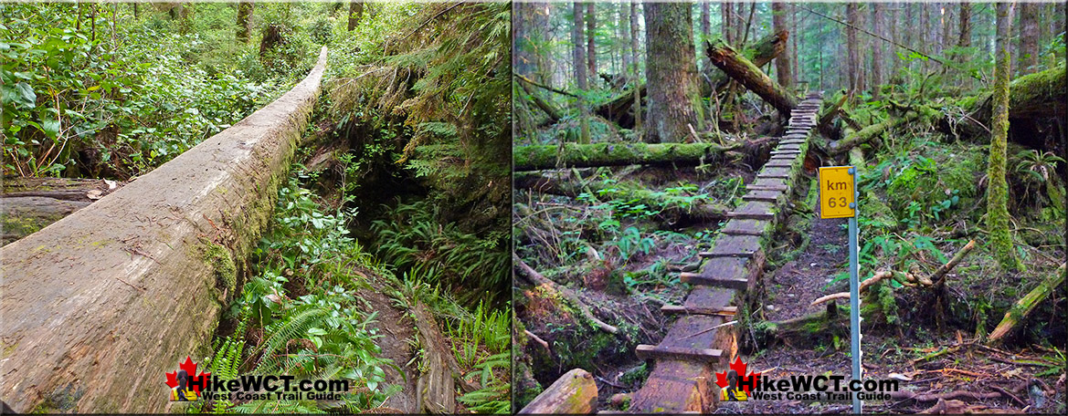 Natural(almost) Bridge and Steps on the West Coast Trail
